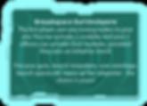 Broadspace battlesphere.png