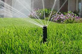 Irrigation2-1.jpg