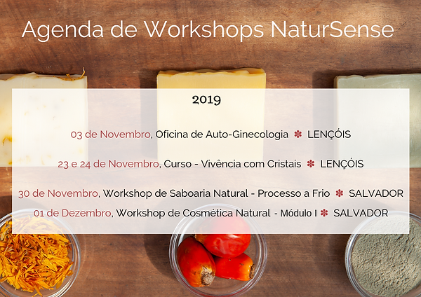 Agenda de Workshops de Saboaria Natural