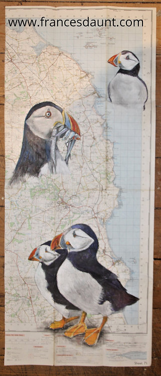 Puffins on map of Northumberland coast