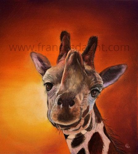 African Sunset (giraffe)