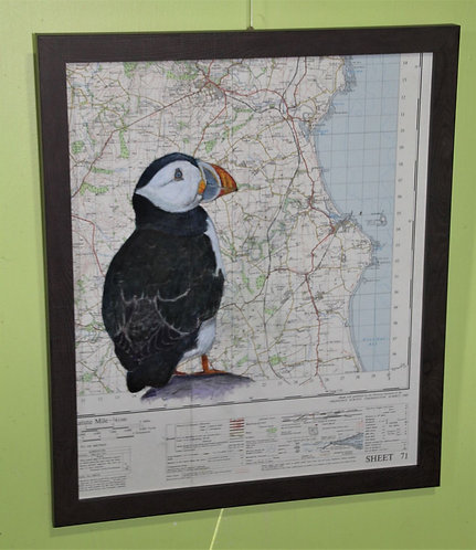 Puffin on vintage map of Northumberland Sheet 71