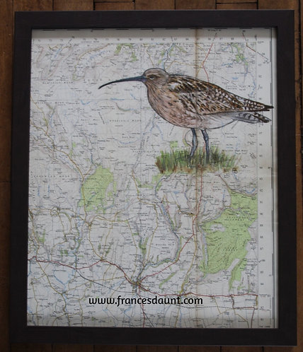 Curlew on Vintage Map of Yorkshire