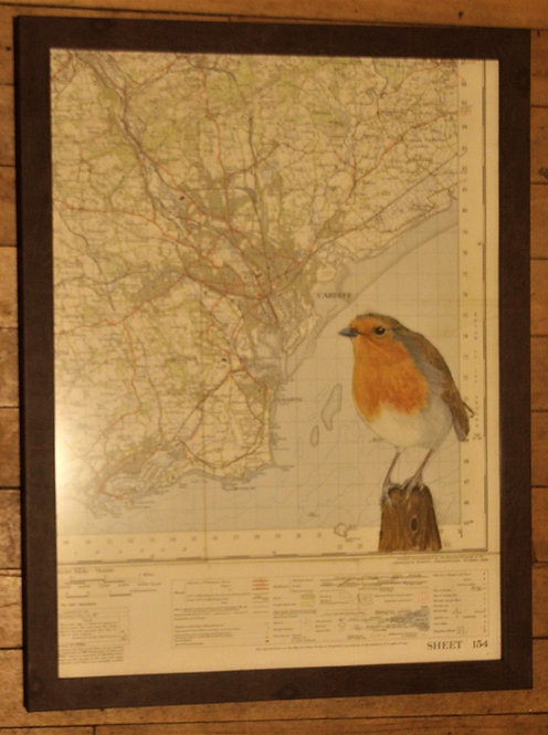 Robin on Vintage Map of Cardiff