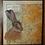 Thumbnail: Peak District Hare