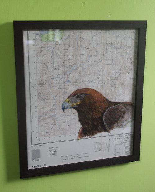Golden Eagle on vintage map (Cairngorms)