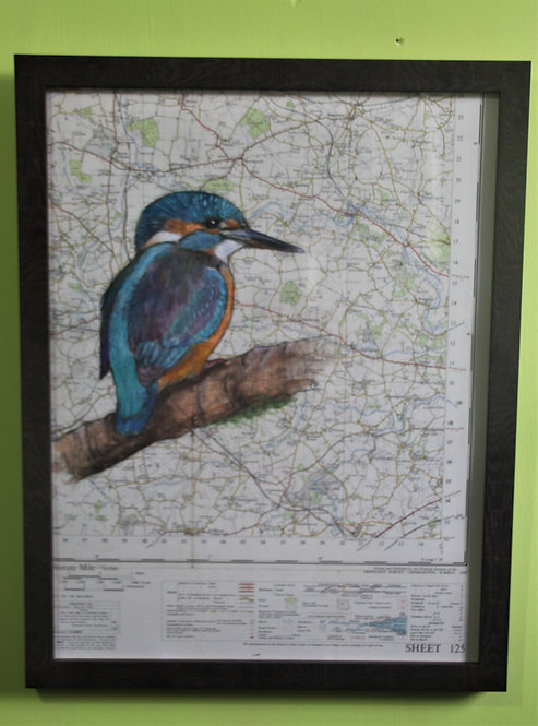 Kingfisher on vintage map of Norfolk