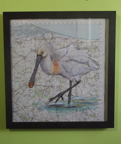 Spoonbill on vintage map (Cley marshes)