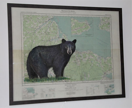Black Bear on Map of Canada (Moncton, New Brunswick & Prince Edward Island