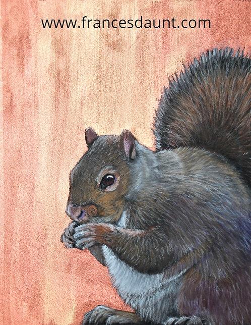Copper Squirrel