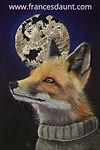 Looking FoxyFB.jpg