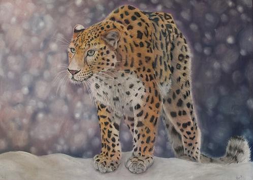 On The Edge - Amur Leopard