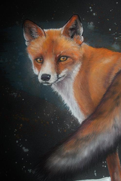 Galactic Fox