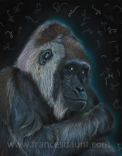 1 in 3 - Western Lowland Gorilla and Ebola Virus