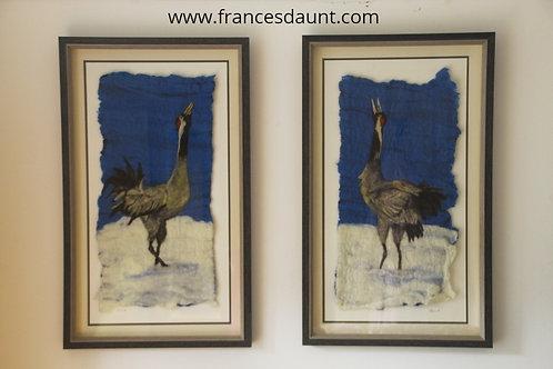 Sandhill Cranes (two pictures)