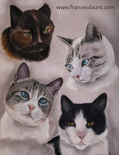 Multi Cat Portrait - The Macree Family