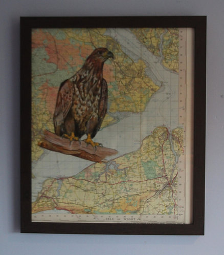 White Tailed Sea Eagle on vintage map covering Isle of Wight