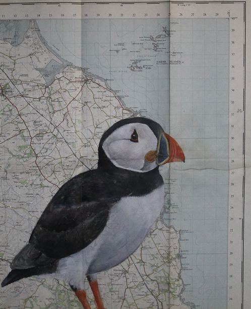 Puffin Map