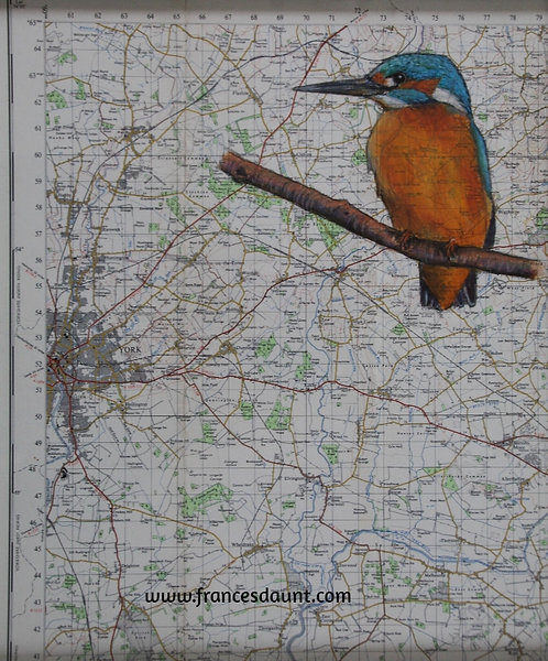 Kingfisher on Vintage Map Featuring York