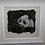 Thumbnail: Bamboo Bear in Wool