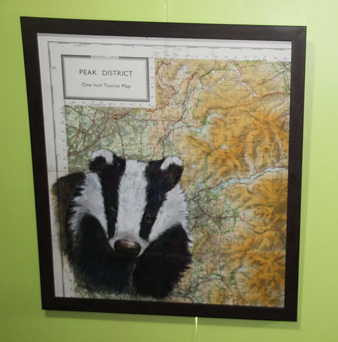 Badger on vintage map of the Peak District