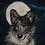 Thumbnail: Lunar Wolf