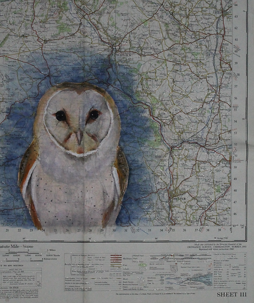 Barn Owl on vintage map of Derbyshire