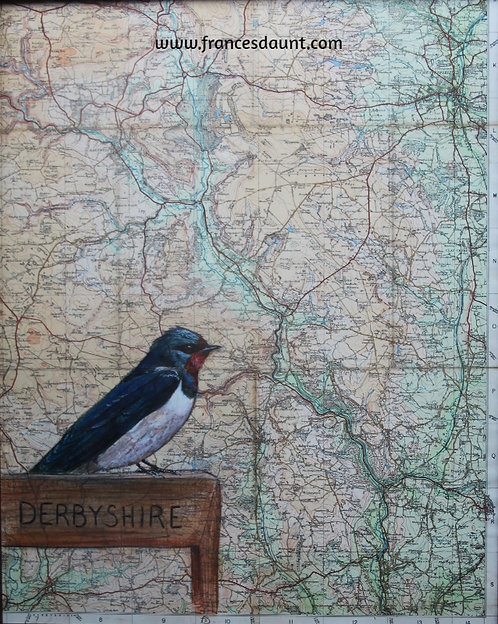 Swallow on vintage map of the Peak District