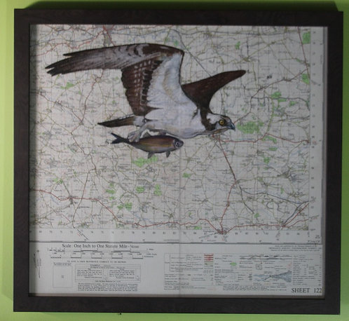 Osprey on vintage map of what will become Rutland Water