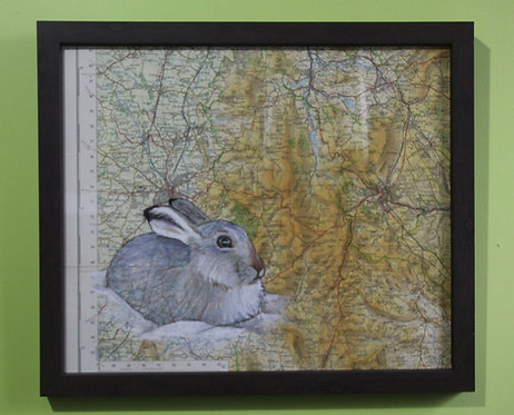 Mountain Hare on Vintage Map of Derbyshire