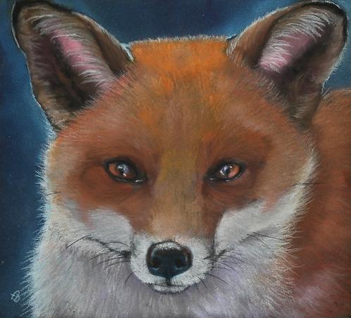 Jack The Fox