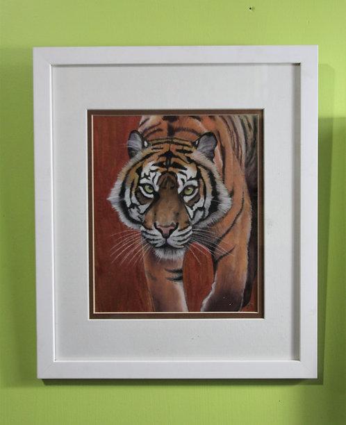 Copper Tiger
