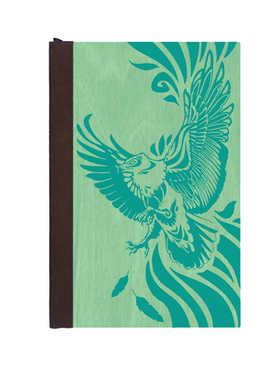 Soaring Eagle Journal