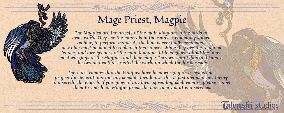 Mage-Priest-Magpie-blurb-introduction.jp