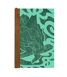 turtle-coaster-on-journal-front-green-te