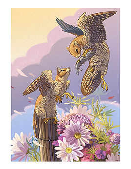 Peregrine-Fables-wix.jpg