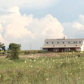 the big white barn field