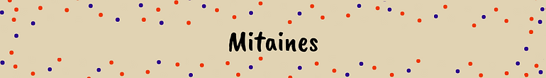 Mitaines.png