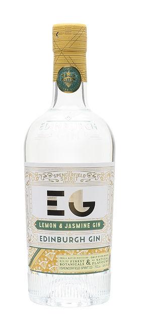 gin_edi13.jpg