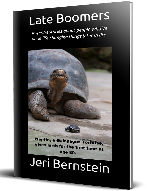 667x835Late Boomers book cover.png