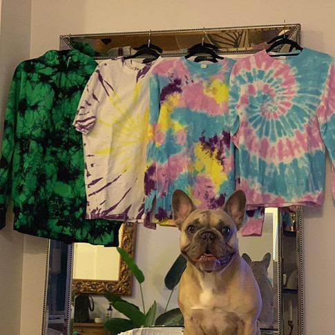 _lolathelilacfawnfrenchie loves the new
