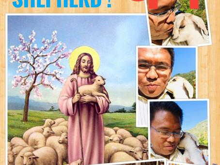 Be a Shepherd ! पथप्रदर्शक बन !!