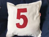 No. 5 Cushion