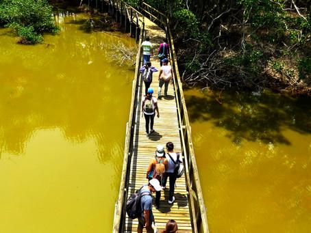 10 paraísos de biodiversidad en Colombia