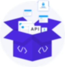 API Integration-Illustration.png
