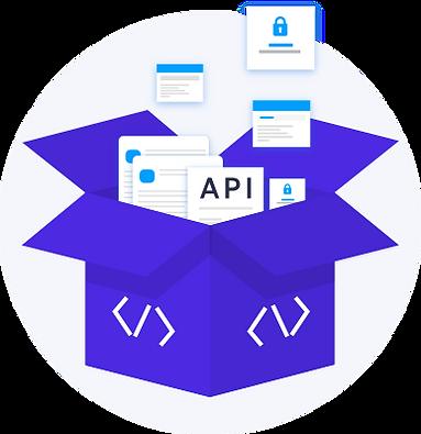 API Integration-Illustration.png