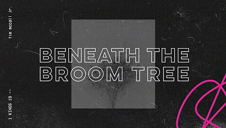 Broomtree.jpg