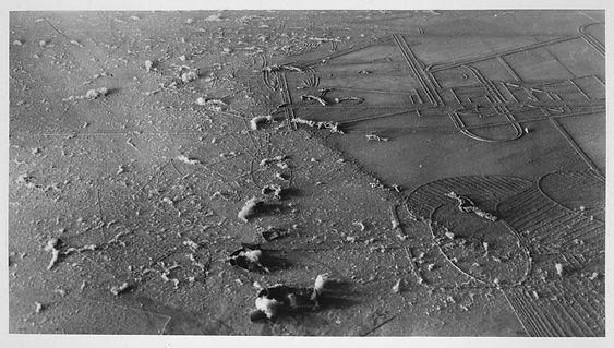 17a. Man Ray, Élevage de poussière (Cria