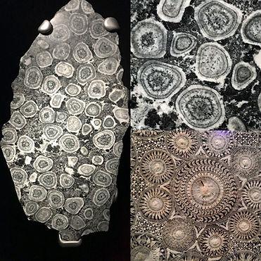 fractal-stone.jpg