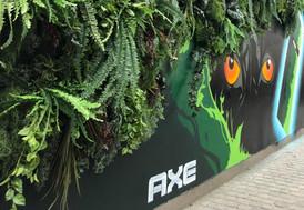 axe-fresh-forest-graffiti-kunst